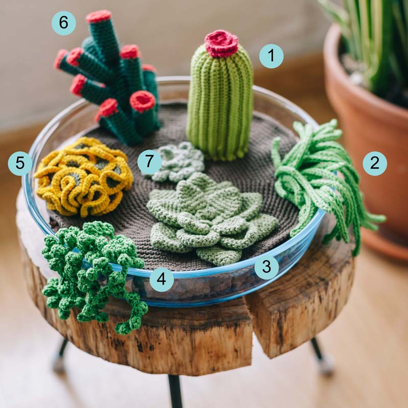 crochet succulents - blog1