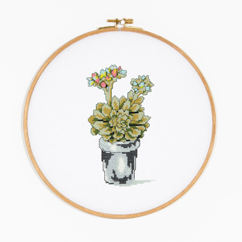 Flowering Succulent design from the DMC Designer Collection of free patterns.